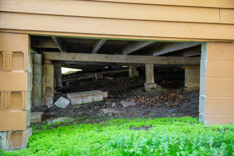 Crawl Space Issues