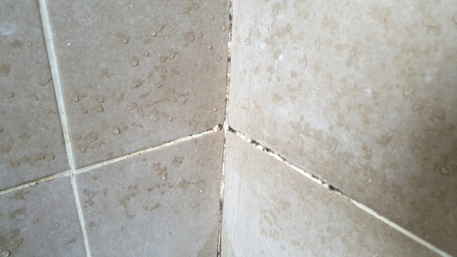 Top 7 Mishaps That End Up Requiring Tile Regrouting