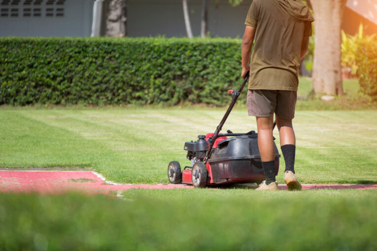 commercial grounds maintenance services