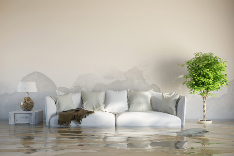 Deal with Water Damage