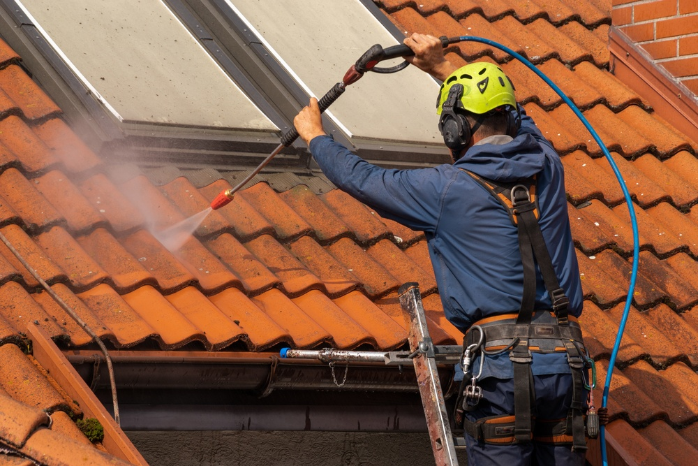 Clean Roof Shingles
