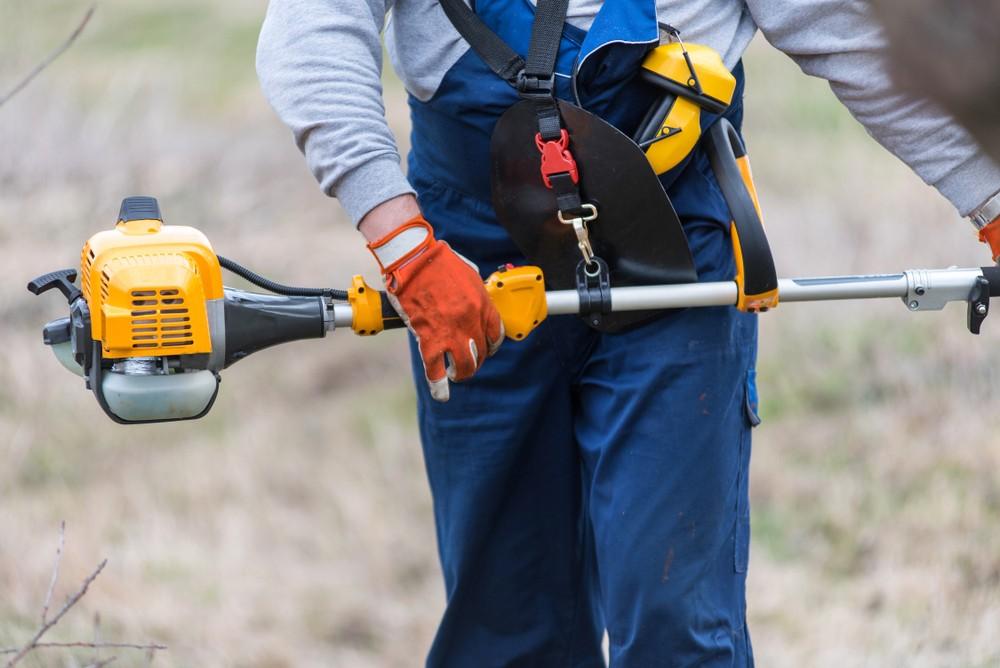Use a Gas-Powered Pole Saw